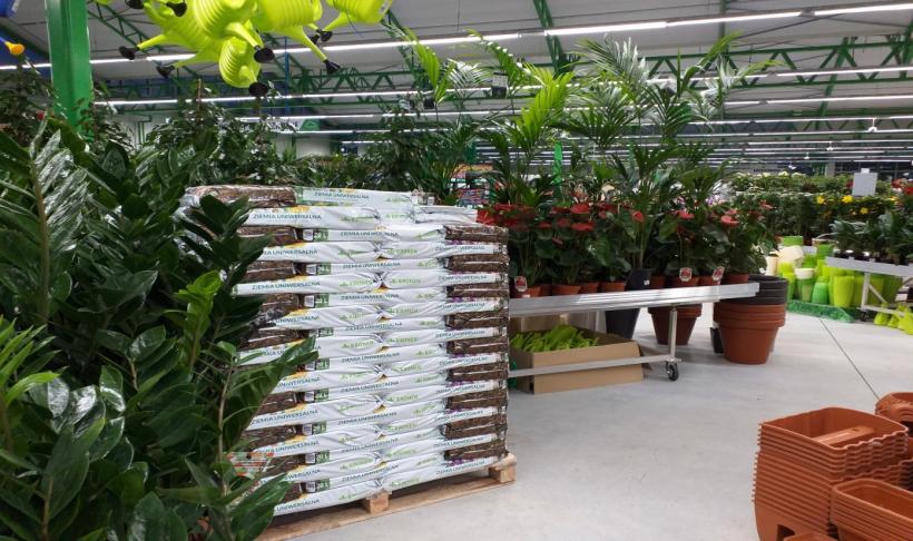 Podłoże dla roślin to podstawa wzrostu